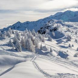 Snowghosts in Bruson - könnte auch in Kanada sein.