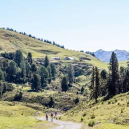 Alp da Munt im Blick