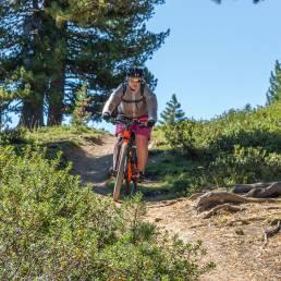Bikerin auf dem Trail