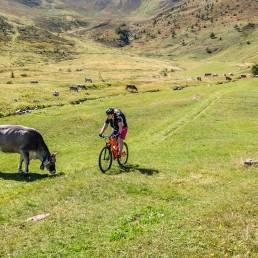 Bikerin und Kuh
